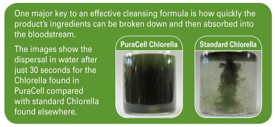 PuraCell Cracked Wall Chlorella Absorption