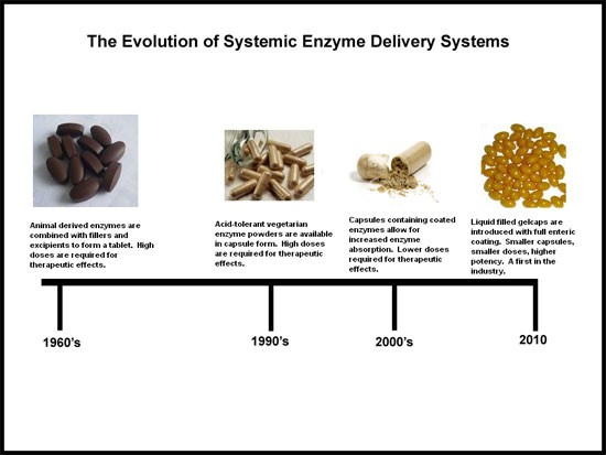 The Evolution of Systemic Enzyme Delivery Systems
