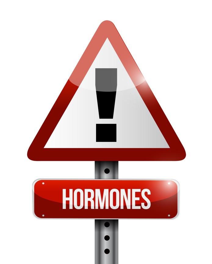 Estrogen Dominance Energetic Nutrition