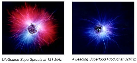 Lifesource Kirlian Photography Comparison
