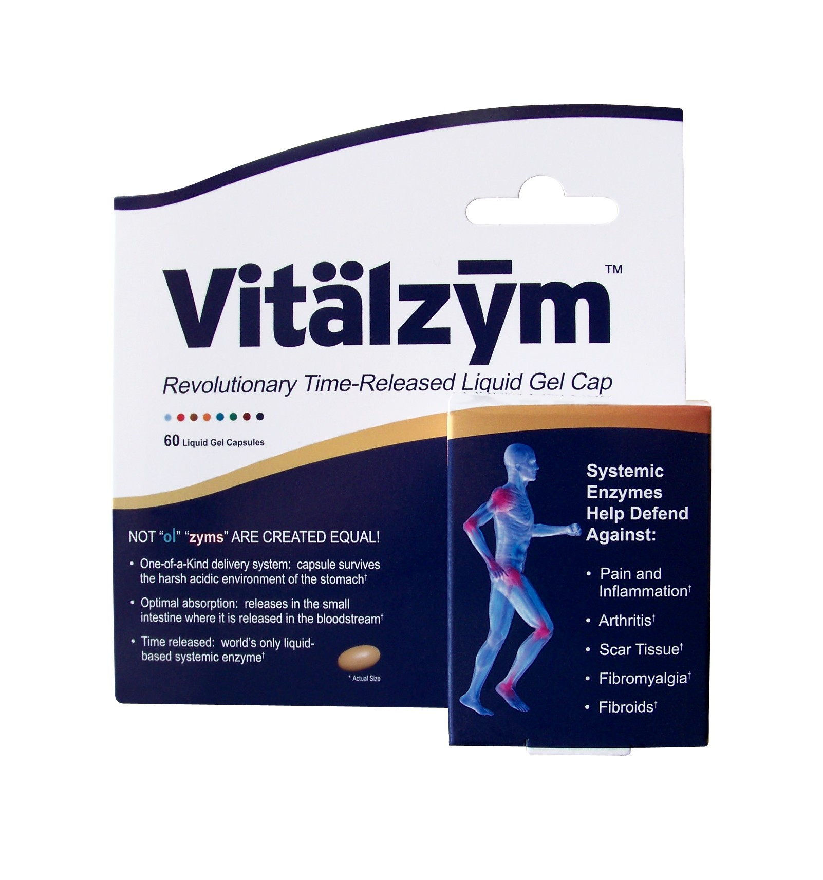 world nutrition vitalzym systemic enzyme supplement-3287