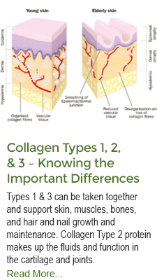 Collagen Types and Knowing Difference