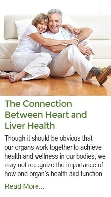 The Connection Between Heart and Liver Health