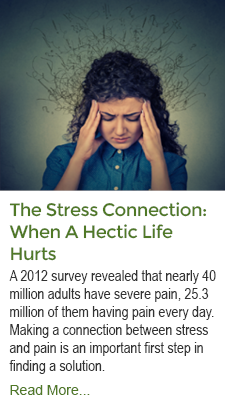 The Stress Connection - When A Hectic Life Hurts