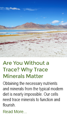 Are You Without A Trace - Why Trace Minerals Matter