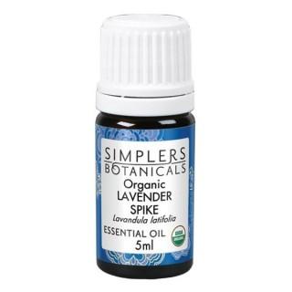Lavender Spike Organic